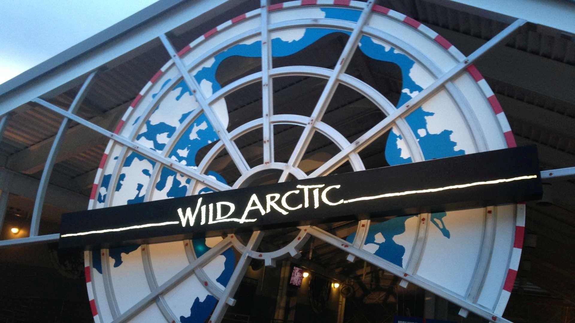 Sea World Wild Artic - Painting