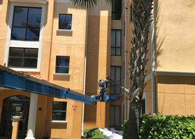UCF Rosen Building - Painting