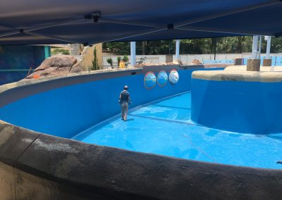 Waterproofing - SW Dolphin Nursery Pool
